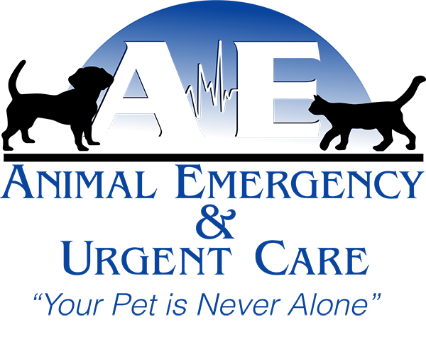 Animal Emergency and Urgent Care